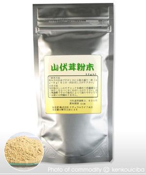 山伏茸(ヤマブシタケ)粉末